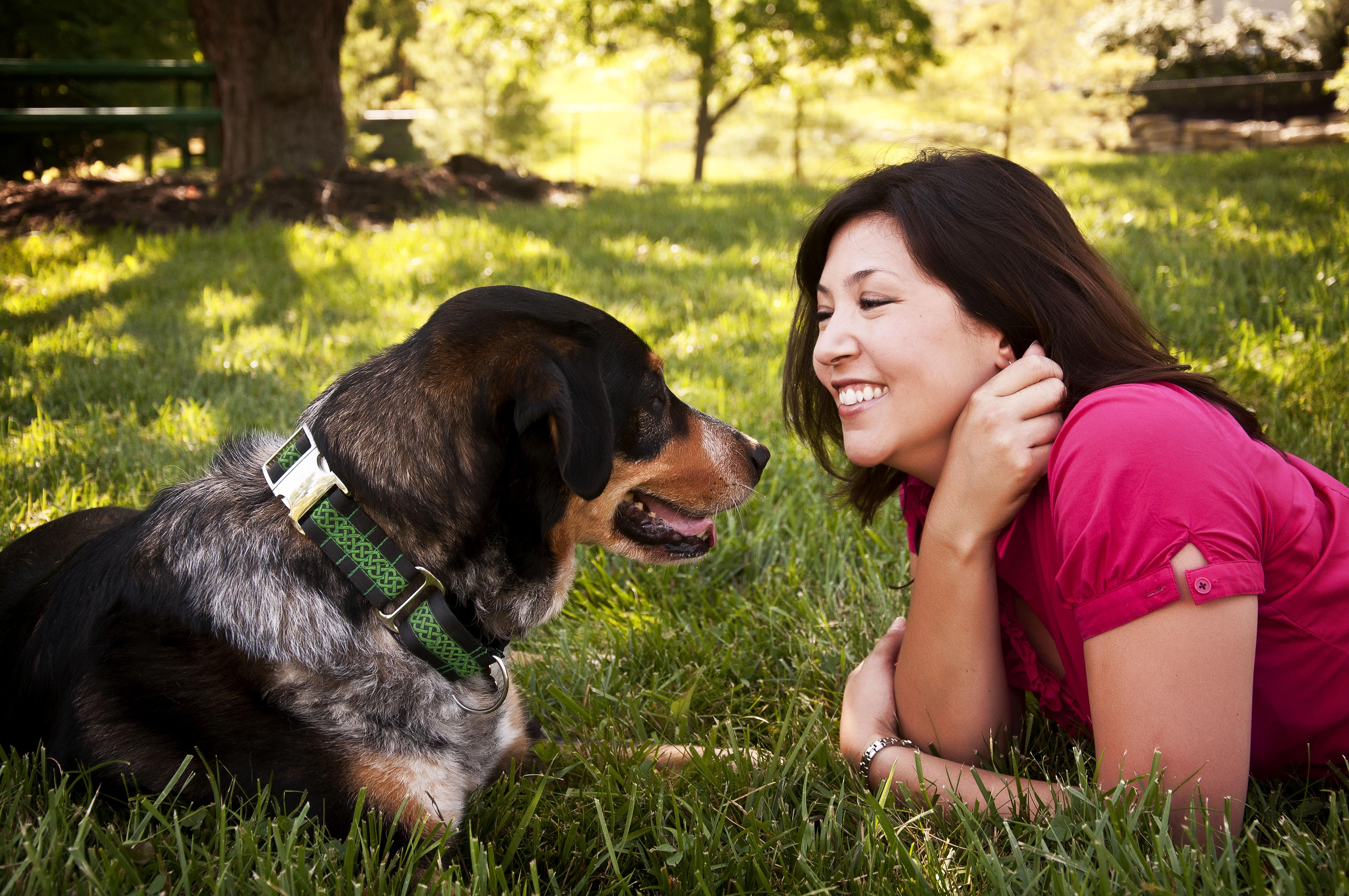 St Louis MO Dog Training and Dog Training Classes