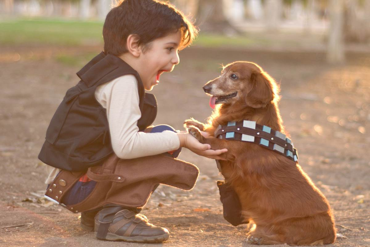 my pet dog kids A child who is a pet lover may be super excited about taking on dog-walking jobs  children under 14 have limited employment opportunities,.
